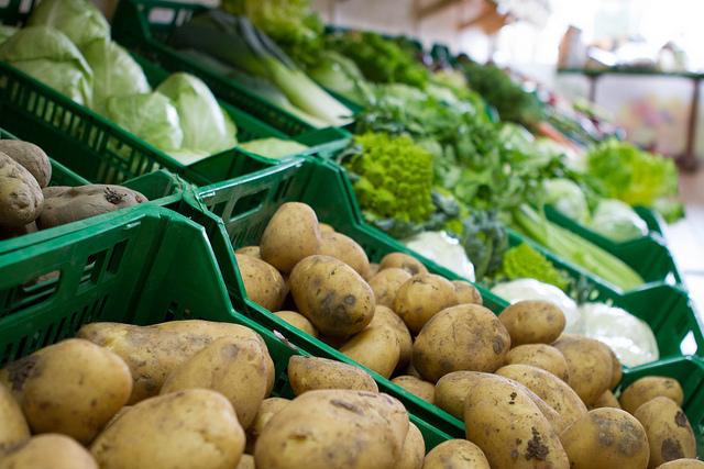 raccolta verdura