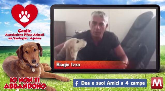 Gli artisti napoletani contro l'abbandono dei cani (VIDEO)