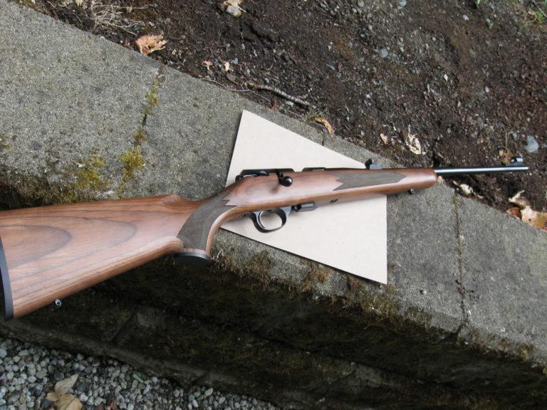 Impallinato con fucile ad aria compressa, versione sospetta della vittima