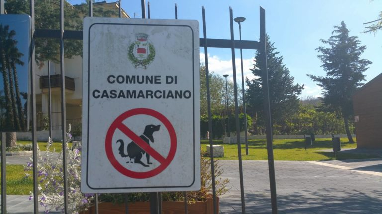 Casamarciano, il sindaco vieta ingresso ai cani nei parchi giochi