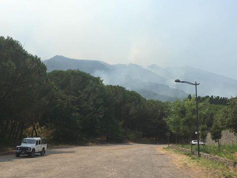 """Incendio nel Parco Vesuvio. Il presidente: """"Lo Stato è impegnato"""""""