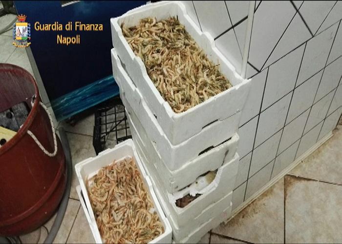 prodotti-ittici-sequestro1