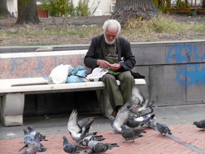 """È tornato a casa Pietro, """"l'uomo che parla ai colombi"""""""