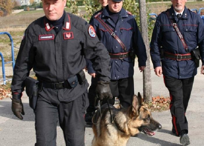 carabinieri-unita-cinofile-droga