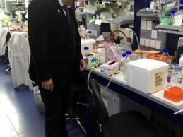 Telethon premia il Maestro Alessandro Masulli per il sostegno alla ricerca