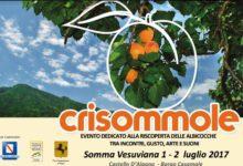 """Somma. """"Crisommole"""", il 1 e 2 luglio, convegni, eventi, degustazioni protagoniste le albicocche"""