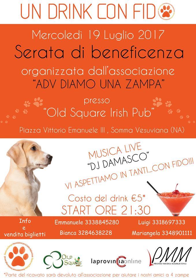 """""""Un drink per Fido"""", serata per raccogliere fondi per i cani randagi di Somma"""