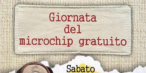 Chip Day – Giornata del microchip gratuito a S.Giuseppe Vesuviano