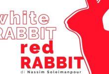 Teatro Bellini accoglie White Rabbit, Red Rabbit con Enrico Ianniello – Ecco le date