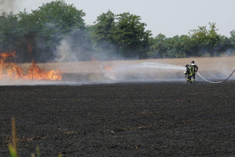 Nola. Incendia mobili e plastica nel terreno del padre: arrestato