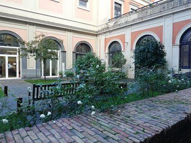 La Giornata degli alberi, nuovo ciliegio al giardino della Vanella del MANN