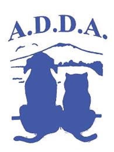 A.D.D.A. – A Castellammare di Stabia strane sparizioni di gatti