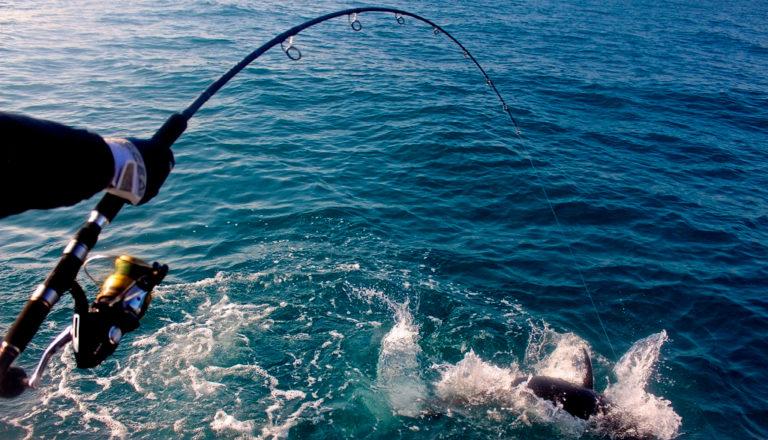 Norme AntiCovid, da Casoria al lago d'Averno per pescare: sanzionati